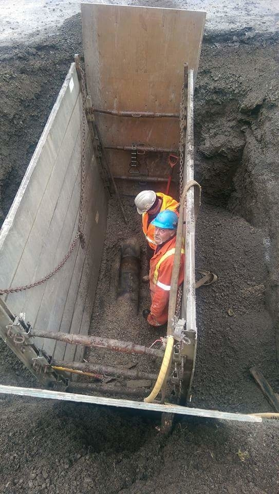 Les Excavations Robin P Ltée  à Lasalle