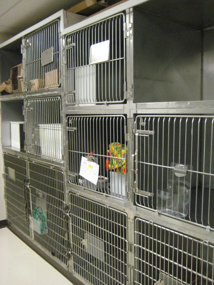VCA Rose Hill Animal Hospital image 2