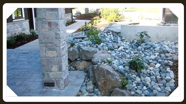 Saanich Landscaping Ltd in Victoria