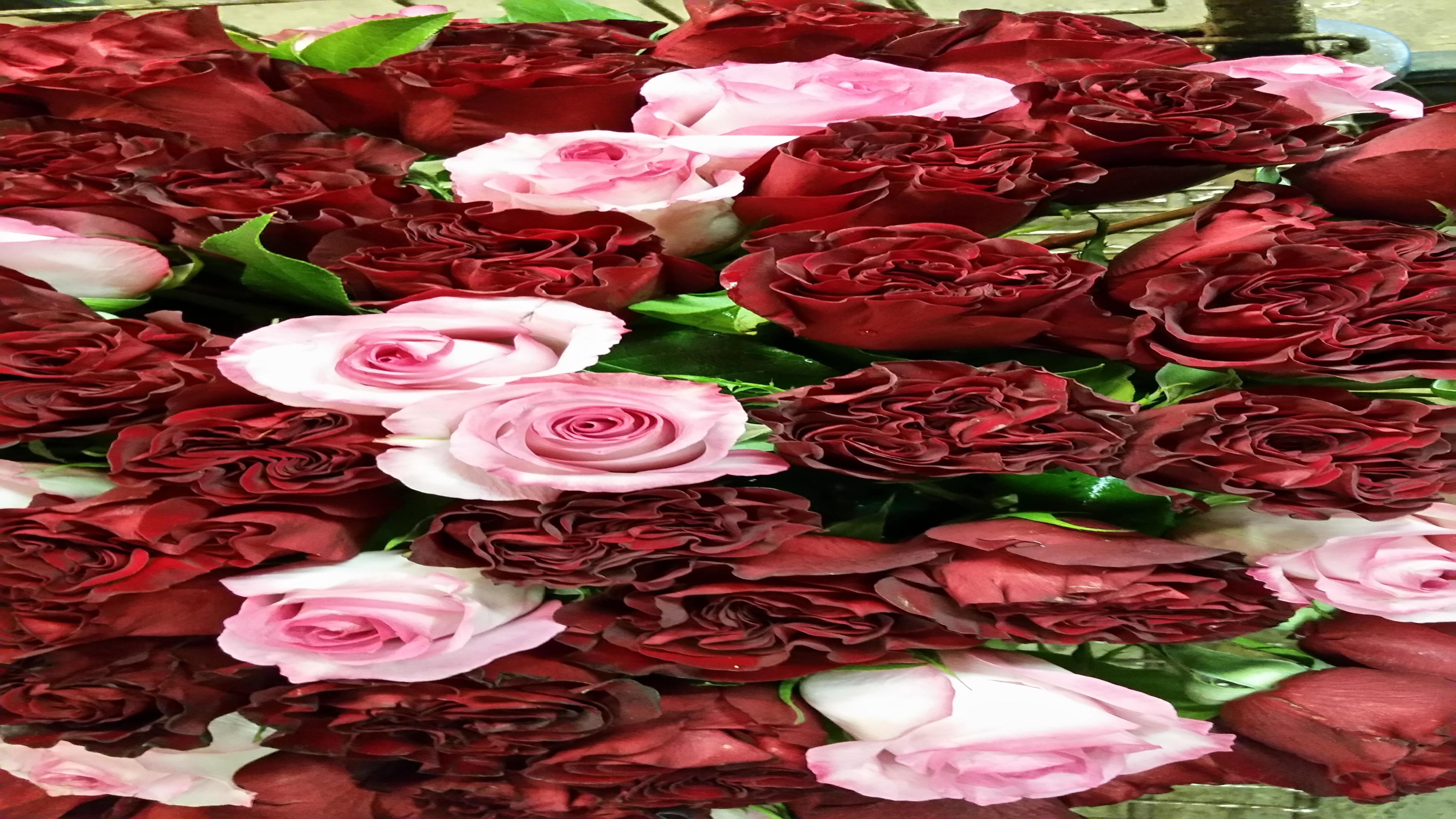 flowersrbaileys image 0