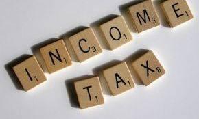 The Tax Lady Enterprises LLC image 2