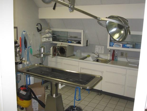 Forest Avenue Veterinary Hospital image 2