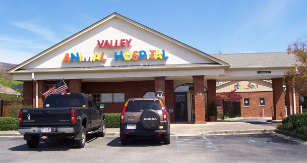 Valley Animal Hospital & Pet Resort
