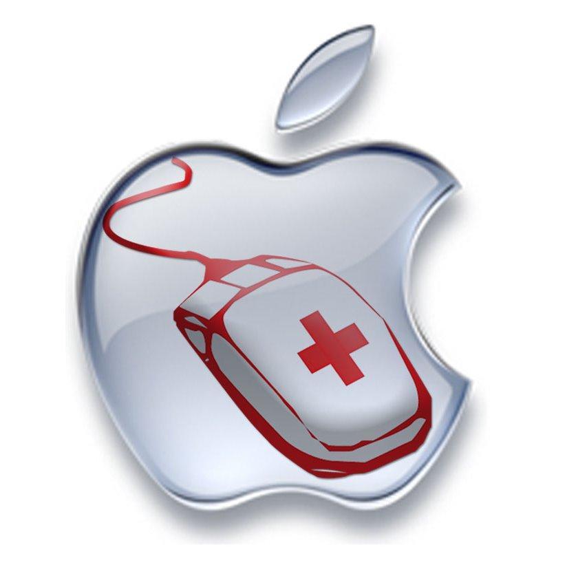 Tampa iPhone Repair Tampa Apple repair Tampa iDoctors 813-839-8000