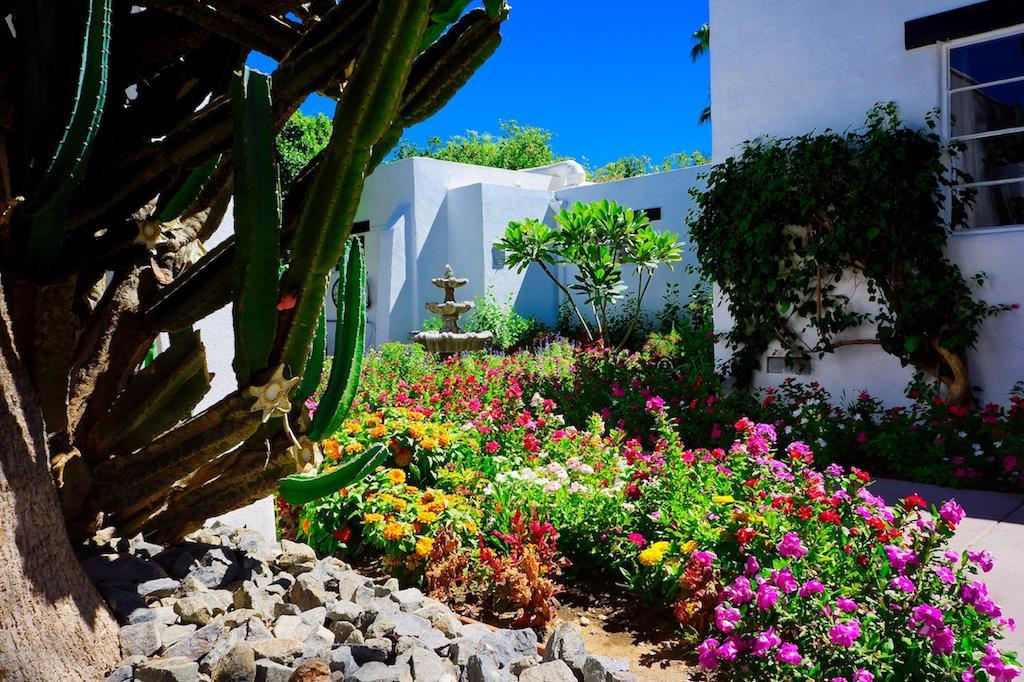 Amin Casa Palm Springs image 3