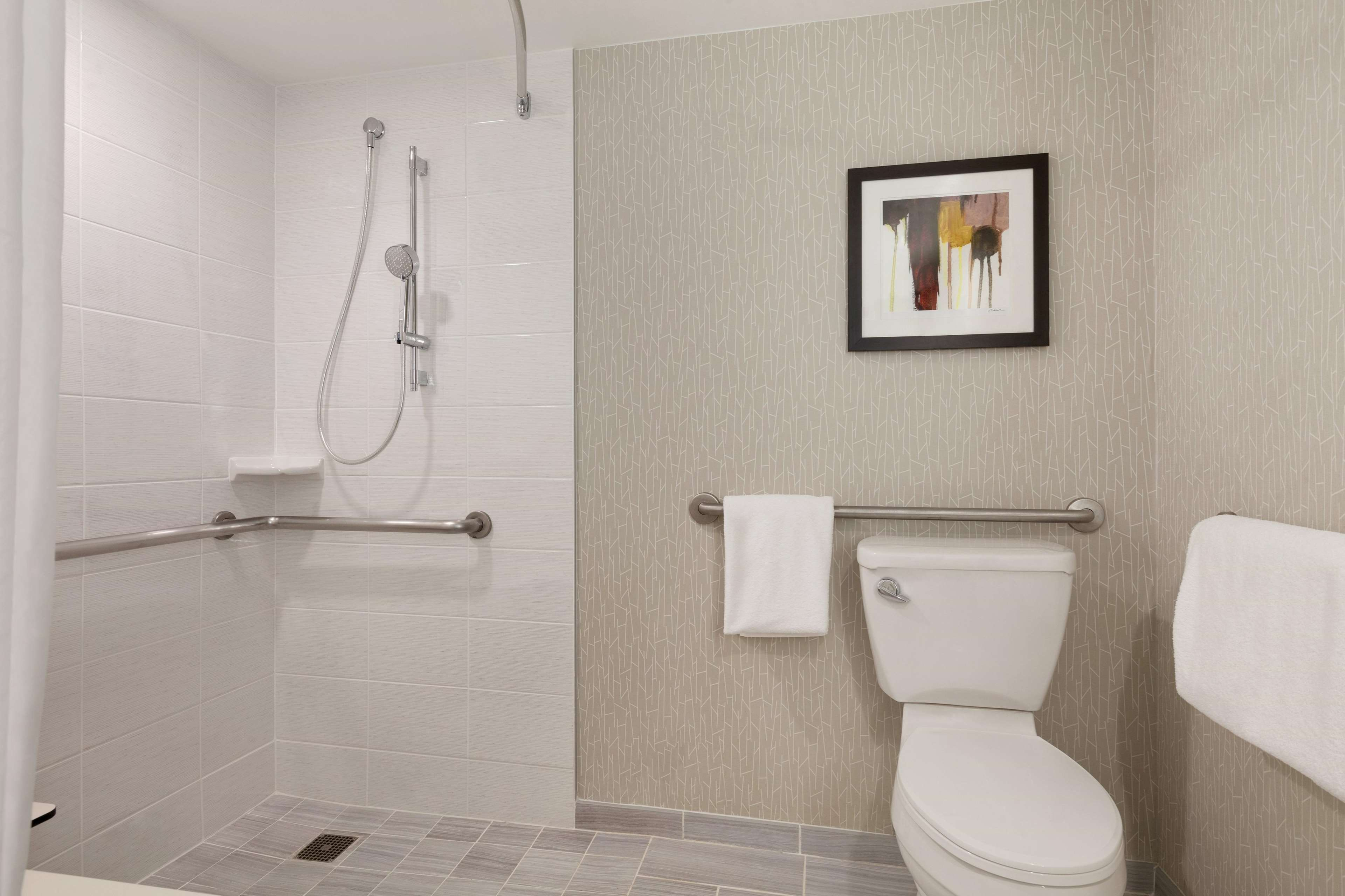 Accesible Bathroom Roll-in Shower