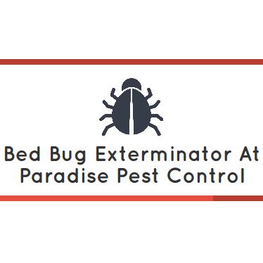 Bed Bug Exterminator Nj Reviews