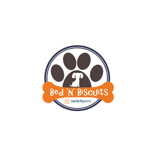 Bed N Biscuits Dog Daycare