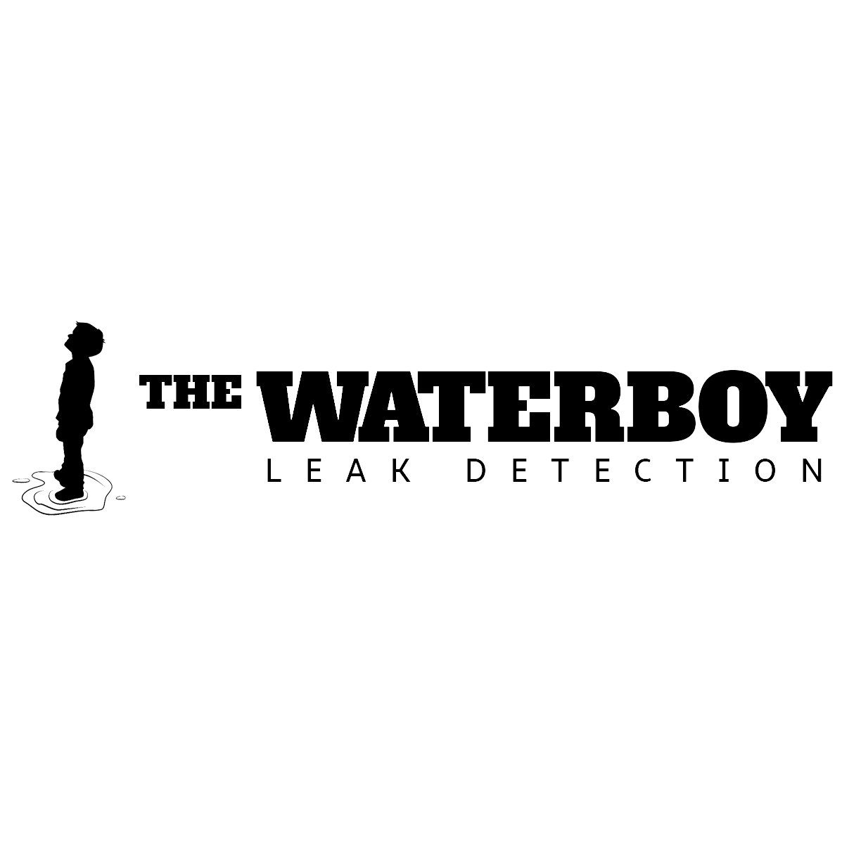 The Waterboy - Leak Detection