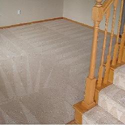 Complete Carpet Care, Inc. image 3