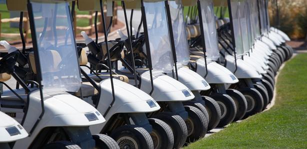Sun City Golf Carts Inc image 0