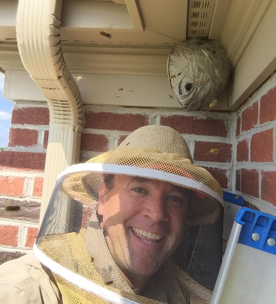 The Bee Man image 4