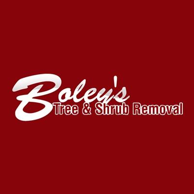 Boley's Tree & Shrub Removal image 0