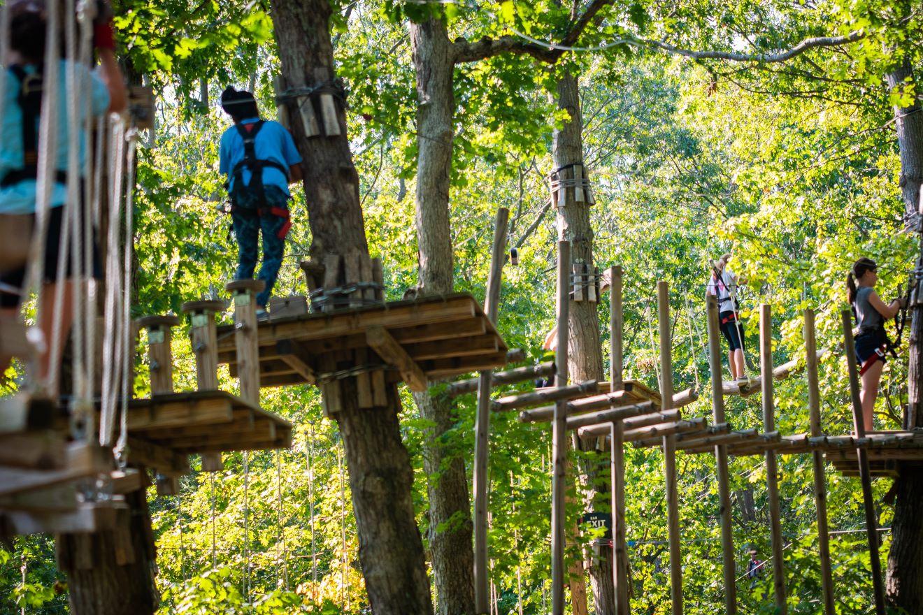 The Adventure Park At Long Island Wheatley Heights Ny Company Data