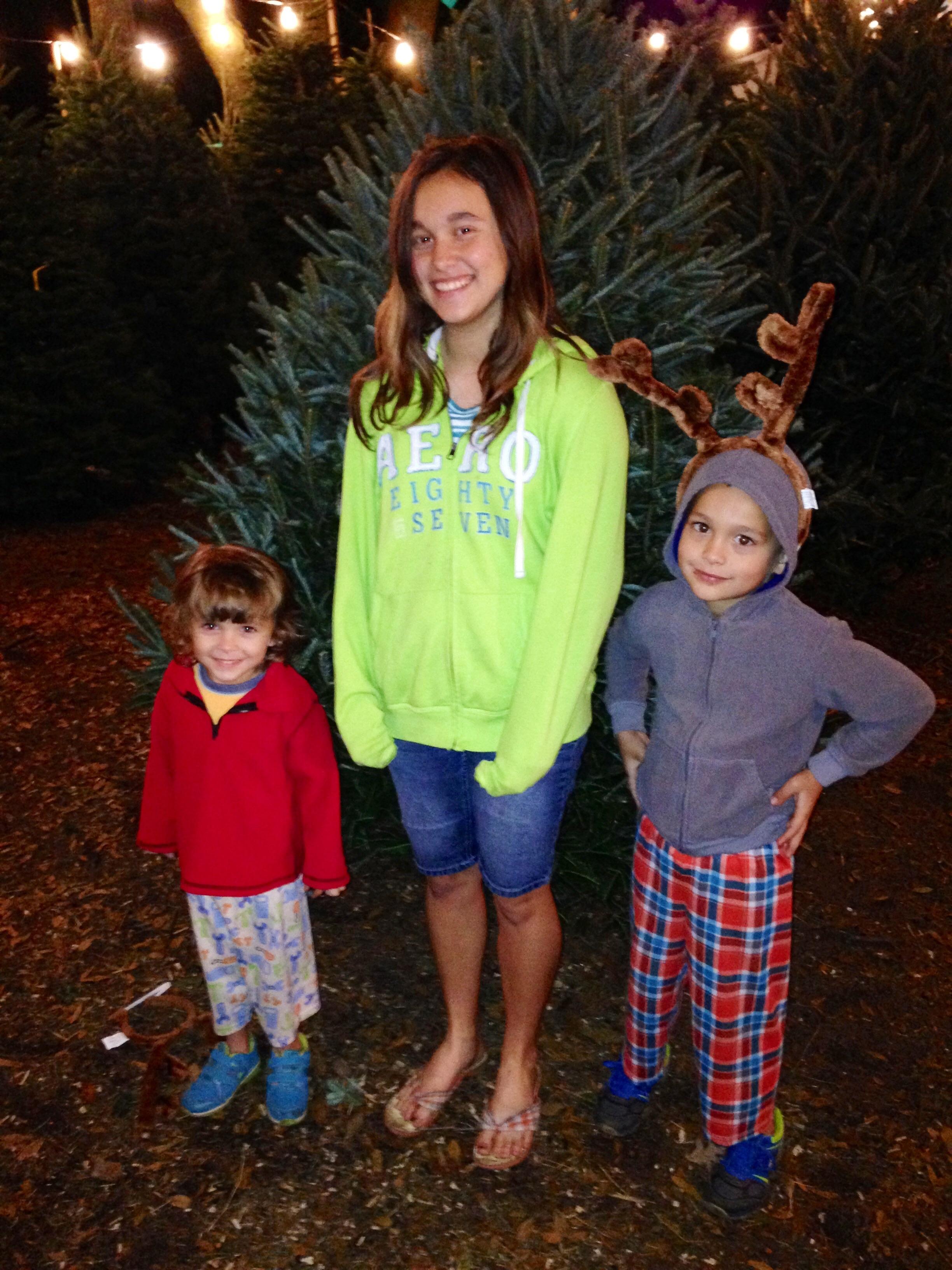 Dave's Christmas Tree Lot image 49