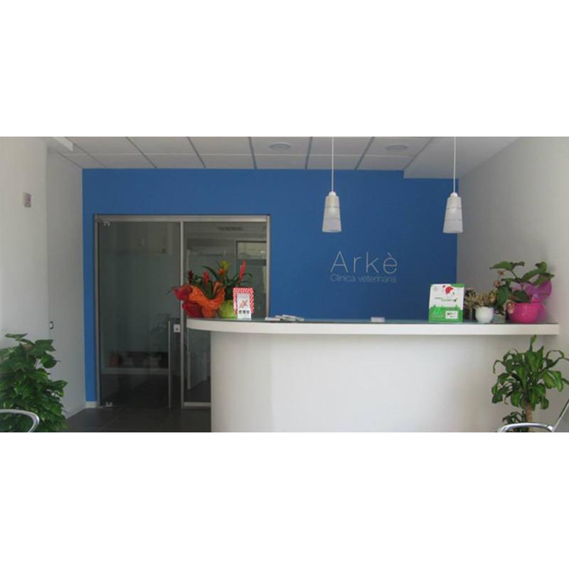 Clinica Veterinaria Arke'