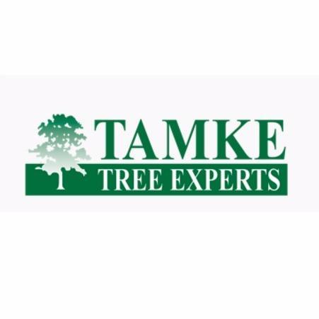 Tamke Tree Experts