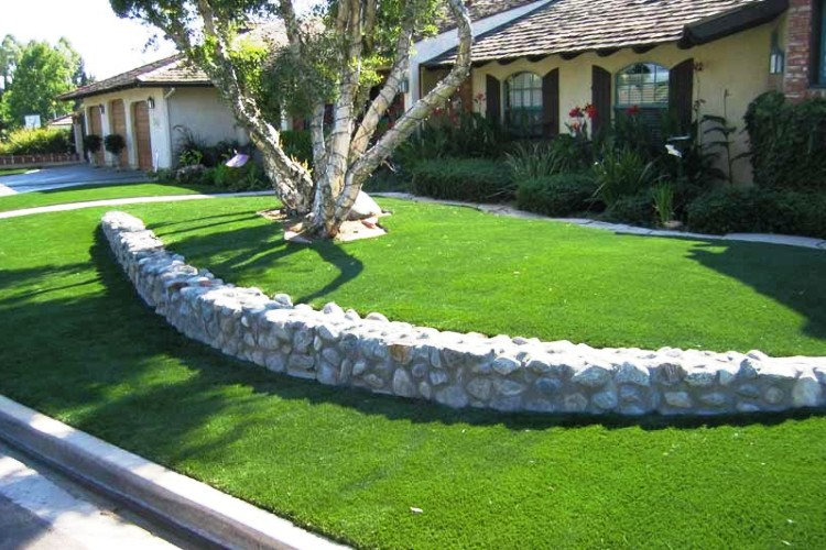 Durable Lawn image 0