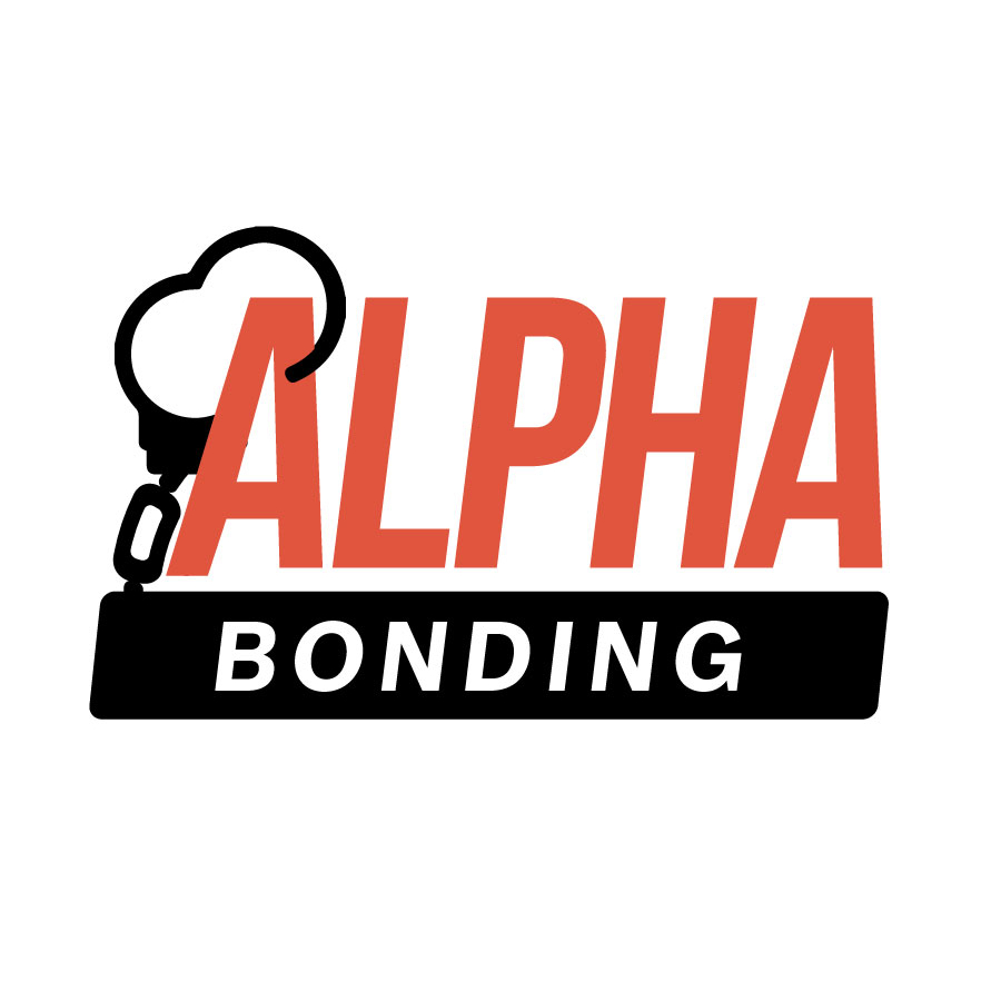 bail bonding business plan