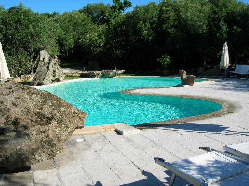 L 39 acqua e il fuoco costruzione manutenzione piscine - Piscina farnesiana piacenza ...