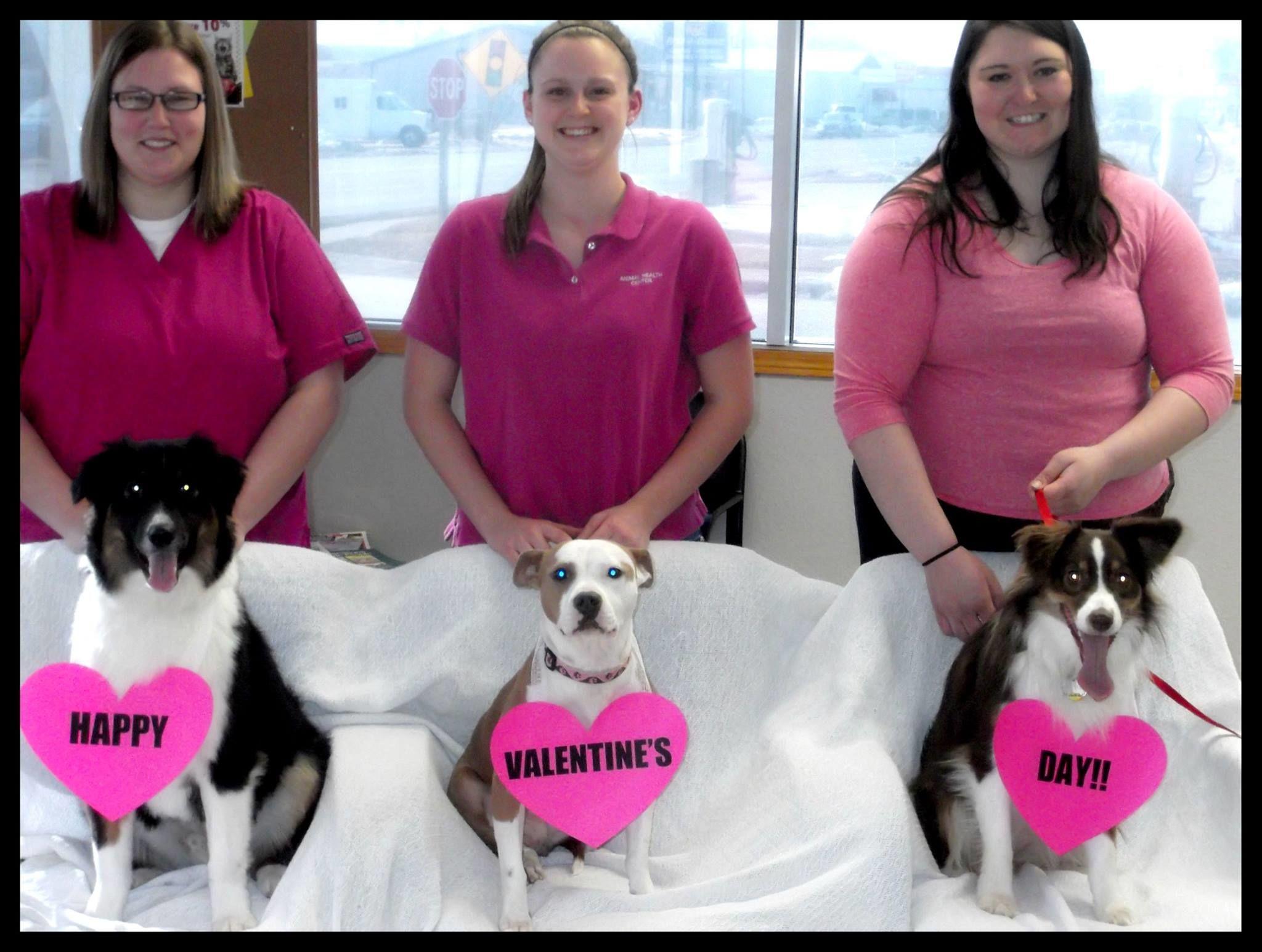 Garver's Animal Health Center image 51