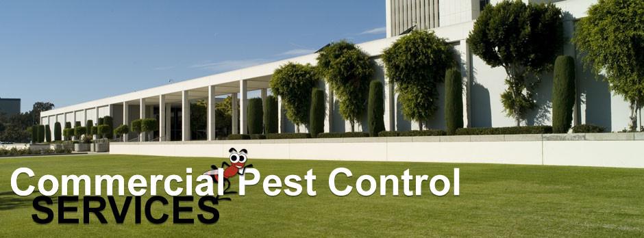 Southeast Florida Pest Control image 3