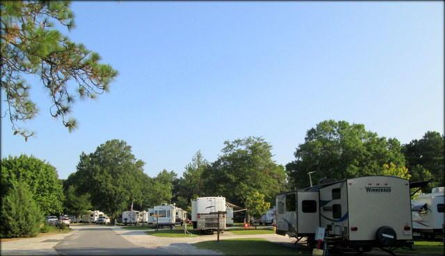 Lumberton / I-95 KOA Journey image 29