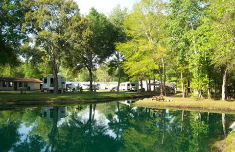 Starke / Gainesville N.E. KOA image 8
