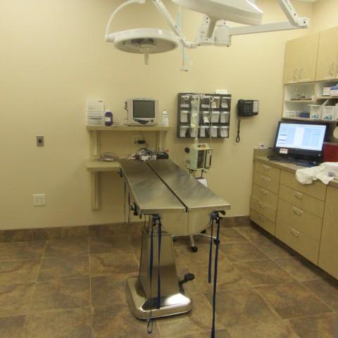 La Sendas Animal Hospital & Grooming image 3