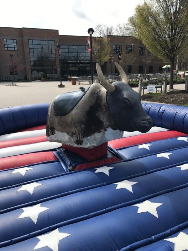 Test your endurance with a Rowdy Ride on our Mechanical Bulls.