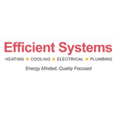 Efficient Systems Inc. image 0