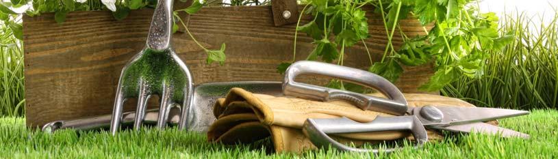 Snavely's Garden Corner image 0