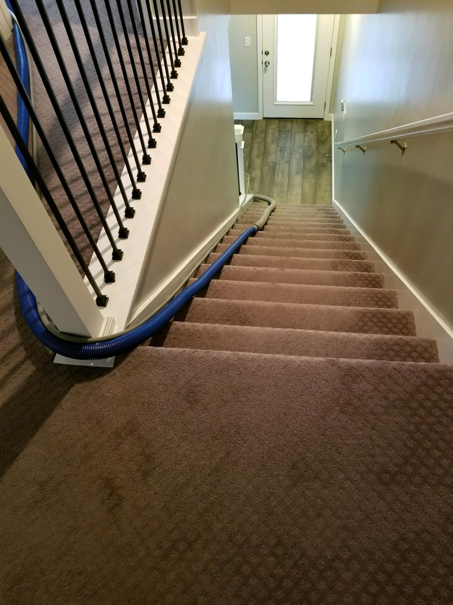 Kelly's Deep Clean Carpet & Upholstery Cleaning image 16