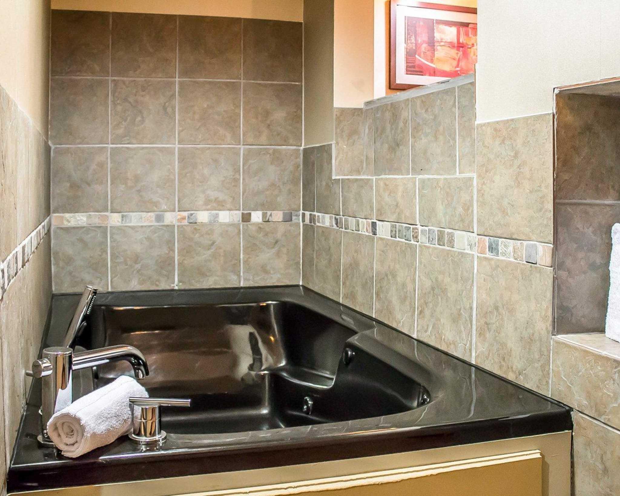 Comfort Suites Perrysburg - Toledo South image 28