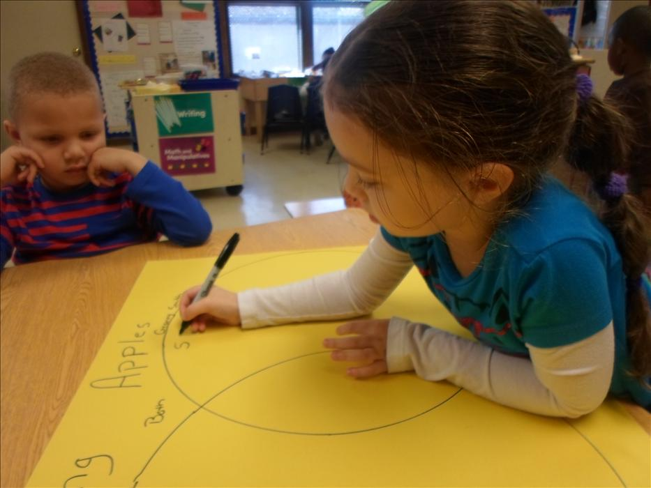 This is What Learning Looks Like: Building brain power using venn diagrams to classify data by similar and non-similar attributes.