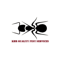 KBR Quality Pest Services image 0