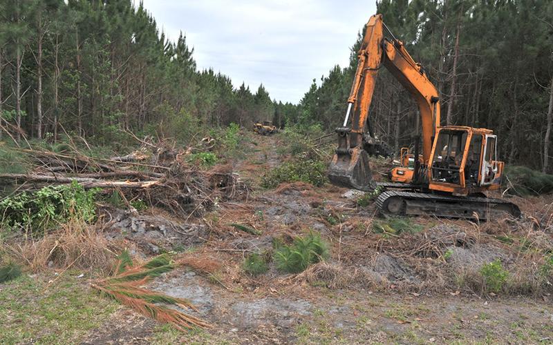 Toiyabe Tree Care Inc image 2