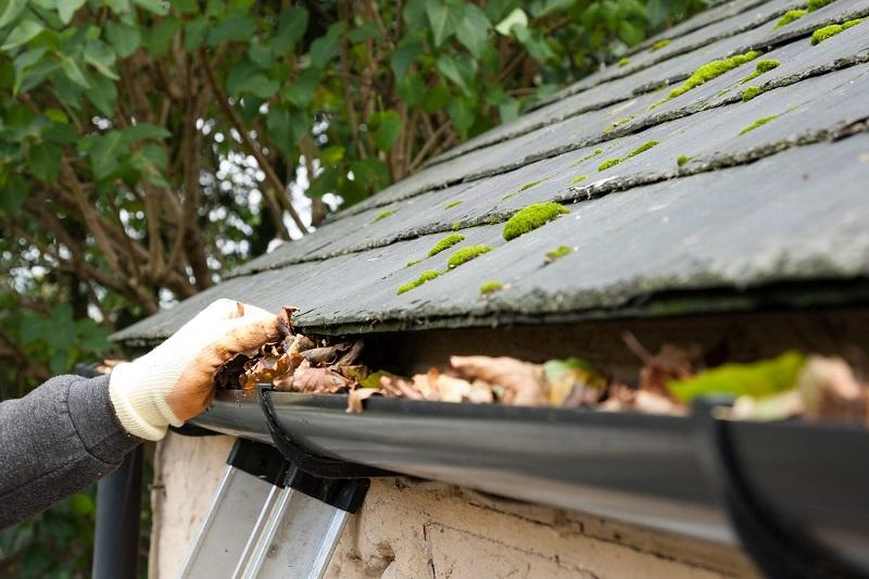 Carden's Raingutter Repair and Cleaning image 1
