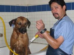 Harbor Animal Hospital image 1