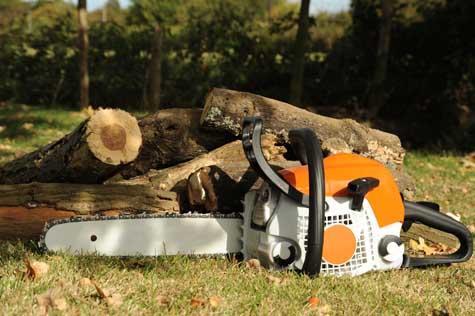 Tree Cutters LLC image 4