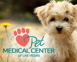 Pet Medical Center of Las Vegas