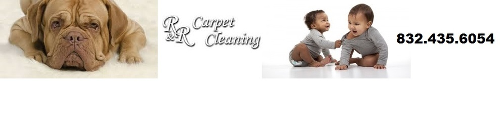 R & R Carpet Cleaning image 41