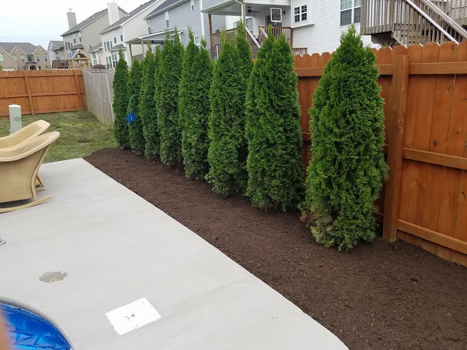 Landscaping Enhancements image 4