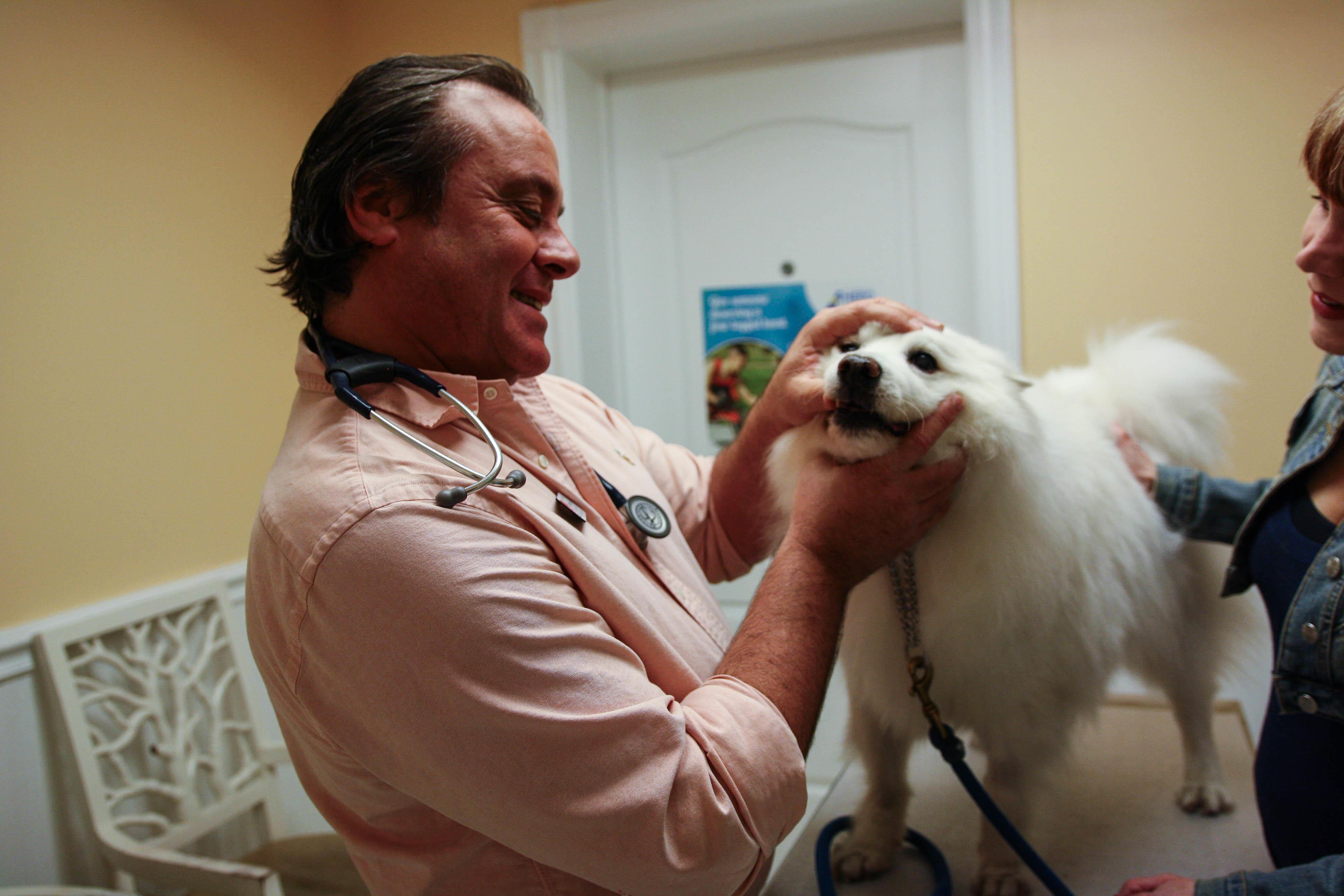Calusa Veterinary Center in Boca Raton, FL, photo #18