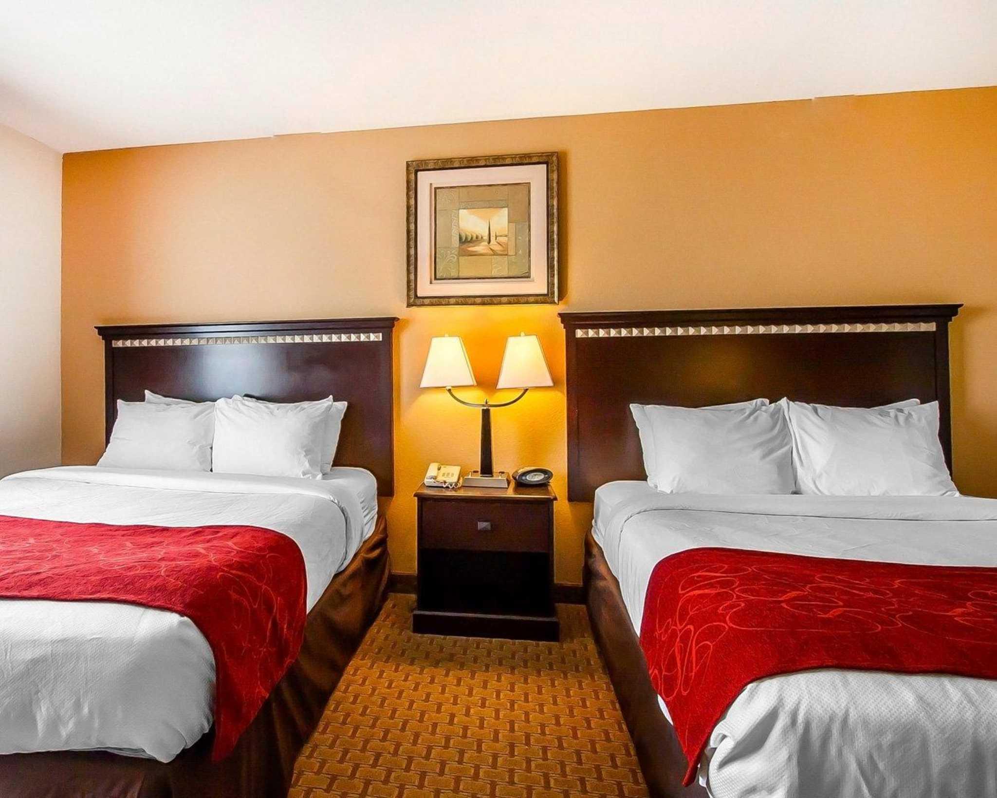 Comfort Suites Jackson-Cape Girardeau image 13