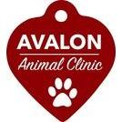 Avalon Animal Clinic in Indianapolis, IN, photo #1