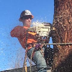 Central Oregon Tree Experts image 12