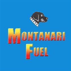 Montanari Fuel Service, Inc. image 10