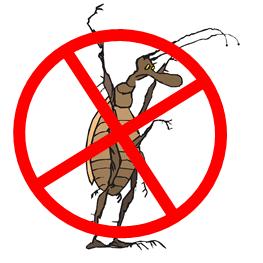 Wyoming Ecological Extermination