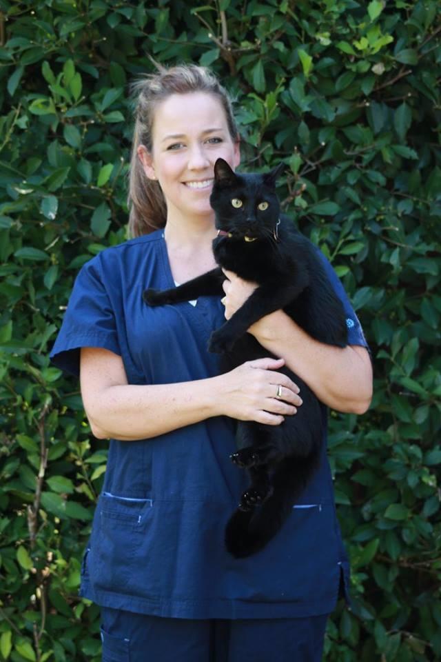 Houston Veterinary Clinic image 10